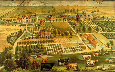 In Praise of Ottawa's Central Experimental Farm: History and Heritage