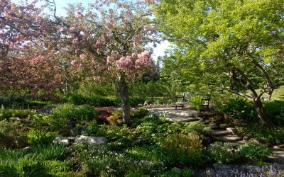 EVENT Canadensis Presents: A Virtual Garden Tour of JARDINS DE MÉTIS-REFORD GARDENS