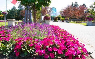 Canadensis Presents: A Virtual Garden Tour of NEW BRUNSWICK BOTANICAL GARDEN